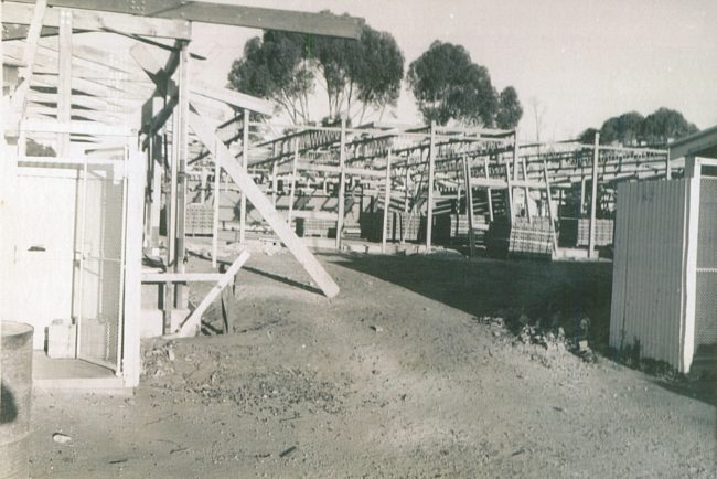 Port Lincoln School 1966